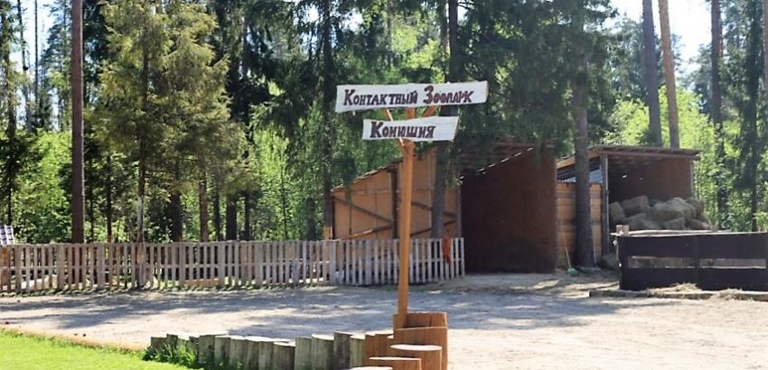 Контактный зоопарк в CLUBBARIN